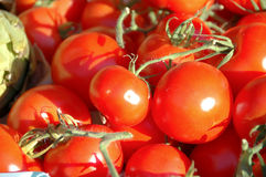 Tomatoes. Some red tomatoes in the sunligth royalty free stock photography