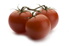 Tomatoes. Three brightly lit fresh tomatoes, isolated on a white background royalty free stock images