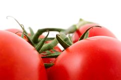 Tomatoes. Red tomatoes isolated on a white background Stock Image