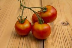 Tomatoes1 Stockbild