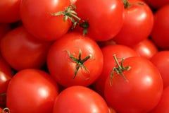 Tomatoes. Ripe tomatoes Royalty Free Stock Photo