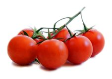 Tomatoes. Isolated on white background Royalty Free Stock Photography