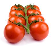 Tomatoes. A vine of tomatoes on a white background Stock Photos