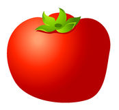 Tomatoes. A red Tomatoes isolate on the white background Stock Photo