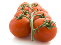 Tomatoes. In a row isolated on a white background Royalty Free Stock Images