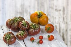 Group of Tomatoes, ancient varieties of various tomatoes on wooden boarc over a old painted wall background Royalty Free Stock Photo