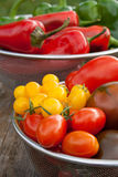 Tomatoes andpepper Stock Photography