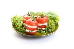 Tomatoes appetizer Stock Images