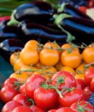 Tomatoes and aubergiines Stock Images
