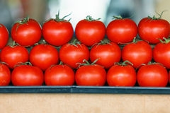 Tomatoes from Azerbaijan stacked in marketplace Royalty Free Stock Photos