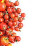 Tomatoes background Stock Photos