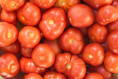 Tomatoes. Background of ripe red tomatoes Stock Photos