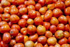 Tomatoes background texture Royalty Free Stock Image