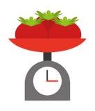 tomatoes balance isolated icon design Royalty Free Stock Photo