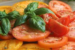 Tomatoes with basil. A tomato variety with fresh basil and olive oil Royalty Free Stock Images