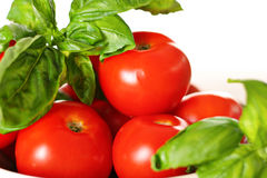 Tomatoes and basil Royalty Free Stock Photos