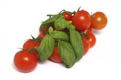 Tomatoes and basil. Fresh tomatoes and green basil leafs Royalty Free Stock Photos