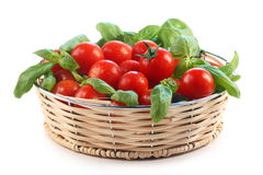 Tomatoes and basil Stock Photography