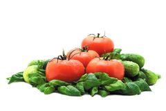 Tomatoes and basil Stock Images