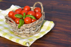 Tomatoes with basil in basket outdoors Stock Images