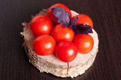 Tomatoes with basil on black table background. Food composition Royalty Free Stock Photos