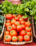 Tomatoes and basil on display in baskets Stock Images