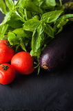 Tomatoes, Basil and eggplant. Fresh tomatoes, Basil and eggplant royalty free stock photos