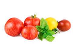 Tomatoes with basil leaf. Various of tomato with basil leaf  on white Stock Images