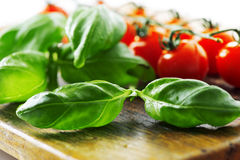 Tomatoes and basil leaf on wooden table close up Royalty Free Stock Photography