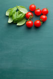 Tomatoes and basil leaves Stock Photos