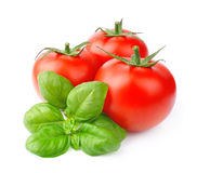 Tomatoes and basil leaves royalty free stock photos