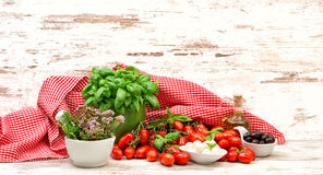 Tomatoes, basil, mozzarella and olive oil. healthy food Stock Photos