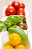 Tomatoes and basil in vertical format Royalty Free Stock Image