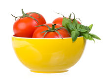 Tomatoes and basil in yellow bowl isolated Stock Image