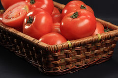 Tomatoes in basket Royalty Free Stock Image