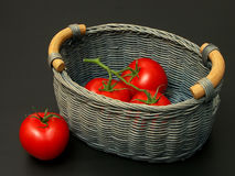 Tomatoes in the basket. Three tomatoes in a basket and one outside royalty free stock image