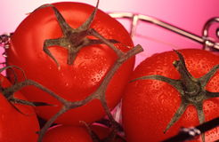 Tomatoes in a basket Stock Photography