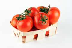 Tomatoes in the basket Royalty Free Stock Photography