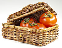 Tomatoes in basket. White background freshly picked Royalty Free Stock Photo