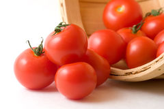 Tomatoes in a Basket. Tomatoes (Campari variety) rolling from a round wicker basket Royalty Free Stock Image