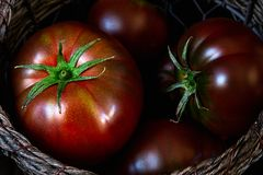 Tomatoes in a basket close up stock image