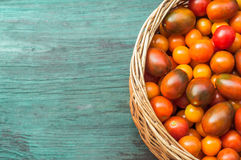 Tomatoes in basket. Tomatoes in a basket on a turquoise background, which is stylized as old boards. Yellow, pink and red tomatoes. Cherry tomatoes. Freshly Stock Image