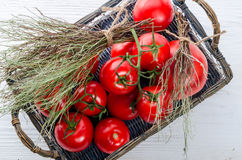 Tomatoes in the basket Royalty Free Stock Photos