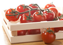 Tomatoes in basket isolated on white. Background Stock Photos