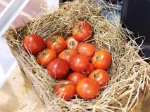Tomatoes in basket with straw. Tomatoes in a basket with straw Stock Photo