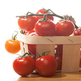 Tomatoes in basket  on white background. Tomatoes in wooden basket  on white background Royalty Free Stock Photos
