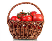 Tomatoes in basket on white royalty free stock photos