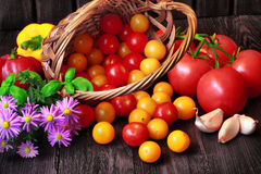 Tomatoes in basket with wildflowers Royalty Free Stock Image