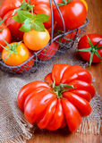 Tomatoes in a basket. On wooden table Royalty Free Stock Photo