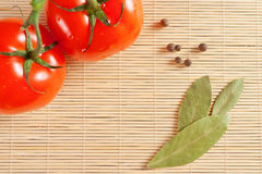 Tomatoes and bay leaf Stock Images